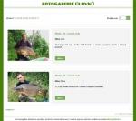 Fotogalerie JetFish - tvorba www stránek, webdesign, internetové obchody