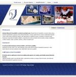 Czechfolkart - tvorba www stránek, webdesign, internetové obchody