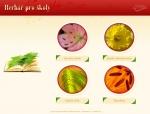 Herbář pro školy - tvorba www stránek, webdesign, internetové obchody