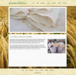 Lavaš - tvorba www stránek, webdesign, internetové obchody